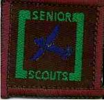 The Senior Scout Air Mechanic Badge